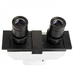 Микроскоп Celestron LABS CB2000C Trinocular